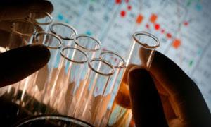 Metabo-Lung: рабочая модель человеческих тканей для проверки лекарств